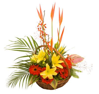 Buy Flower Basket, A31 Sunrise