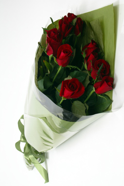 Buy Roses - Simple Dozen Red Roses