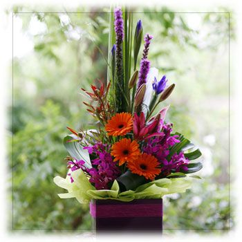Buy Tropical and Seasonal Flowers