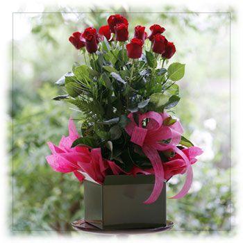 Buy Long Stemmed Red Roses