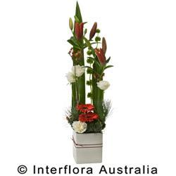 Buy Festive Splendour Arrangement