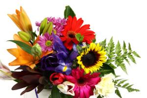 Buy Mystery Flowers - Cut Flowers