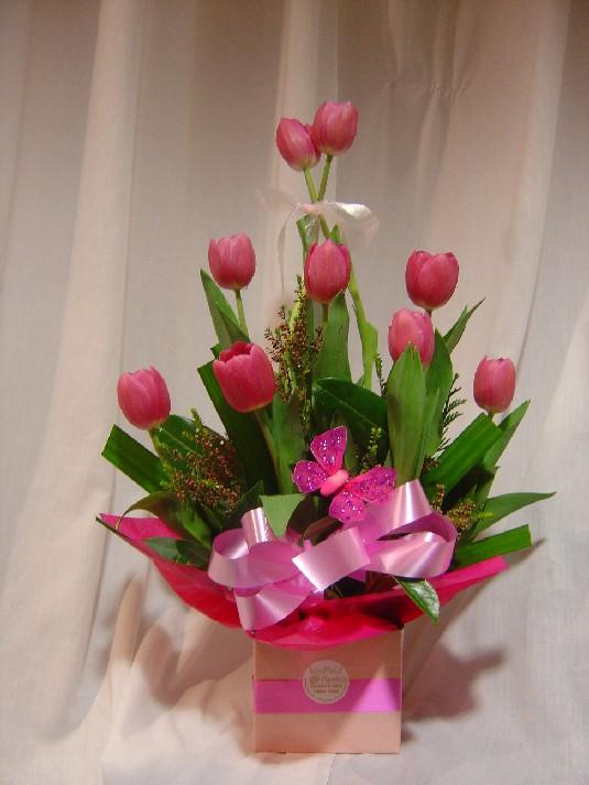 Buy Scarlet Tulips