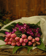 Buy Tulip & Orchid Bouquet