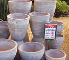 Buy Flower Pot Range