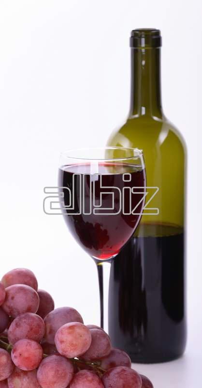Buy 2008 Shiraz Wine