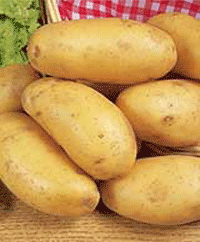 Buy Perfect Potatoes