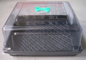 Buy Grow Top Lid With Vent