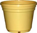 Buy Classic Decorative Pots