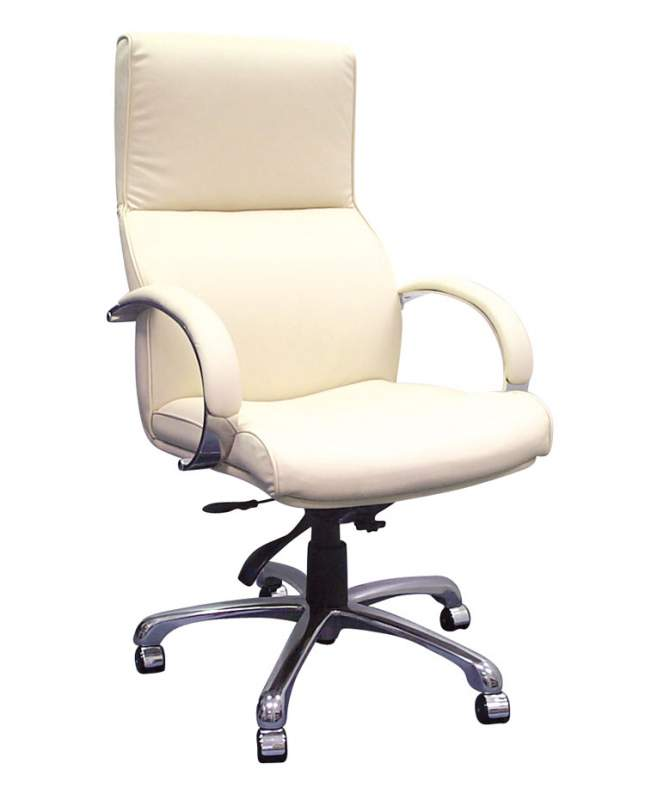 Buy Executive Chairs, Jupiter -JUPH