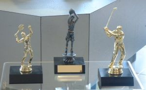 Assid trophies