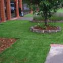 Buy Synthetic Lawn Lady Jane