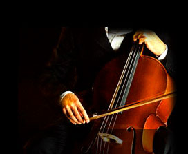 Buy Musical Instrument Accessories