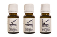 Buy Lavandula Angustifolio Essential Oil (12ml)