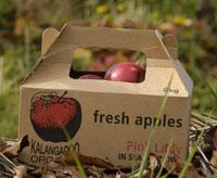 Buy Organic Fruits