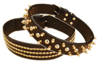 Leather Collars and Leads