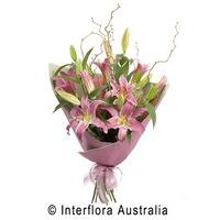 Elegant Lillies
