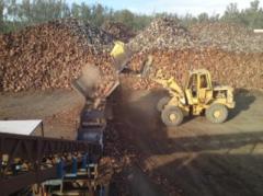Bark King Firewood