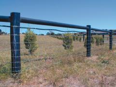 Posts, Poles, Perfect Round Poles, Split Poles