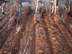 Planters, Ct 2330 & 2340