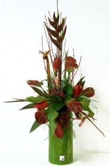 Antherium tropical