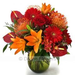 Signature Bouquet Vibrant