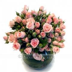 Manhattan Tea Roses