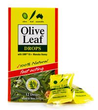 Olive Leaf Oral Drops