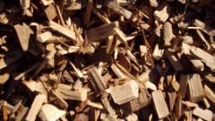 Cypress Pine Woodchip