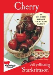 'Starkrimson' Cherry