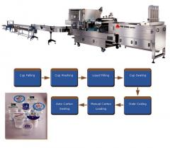 Fully Automatic Cup Filling, Sealing and Carton