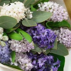Hyacinth Wrap