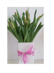Tulips in ceramic vase