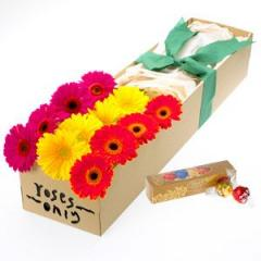 Bright Gerberas Flower Gift Box