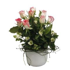 White Ceramic Pot of Roses and Snow Berry
