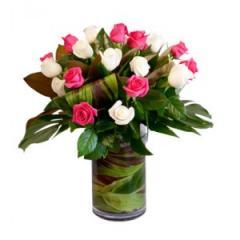 Jo-Anne Roses