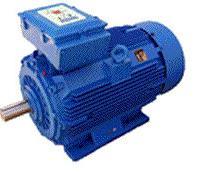 Western electric motors