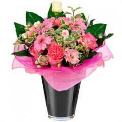 Stunning pink flowers