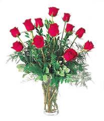 Darling Dozen Roses