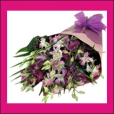 Bouquets & Cut Flowers