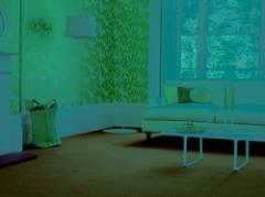 Carpet Plains