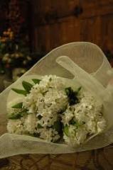Hyacinths Bouquet