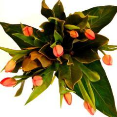 Abella Bouquet