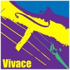 Kreisler 'Vivace' Set of Violin Strings