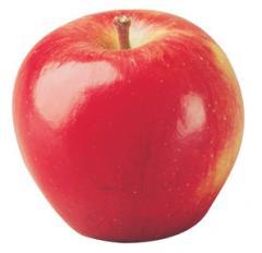 Braeburn Apple Trees