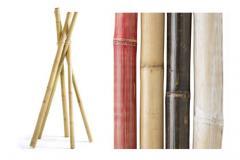 Bamboo Poles Natural