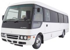 Fuso rosa bus