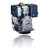 Diesel Engines Single Cylinder Series D