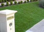 Synthetic Lawn Bonita