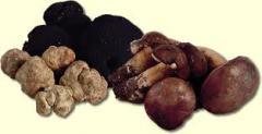 Truffles & mushrooms